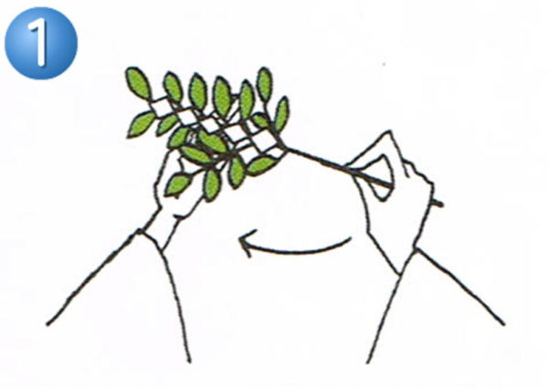 玉串奉奠の作法1
