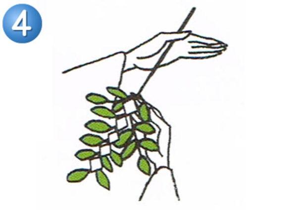 玉串奉奠の作法4